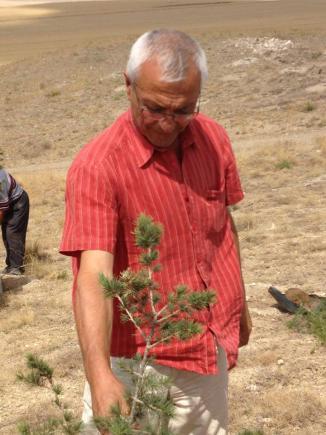 1000 Çam Fidanı Toprakla Buluştu