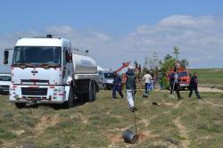 Bozan Mahallesi Ağaçlandırma Çalışmaları