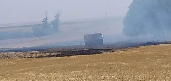 Kulu'da karga yangına neden oldu